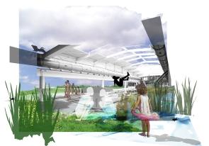 Photomontage concept piscine naturelle